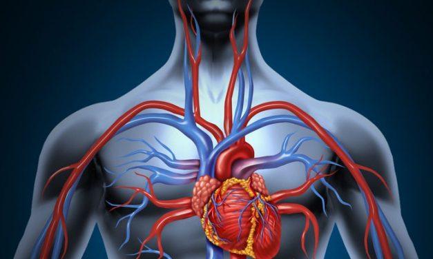A növekedési hormon emberi testre gyakorolt hatásai